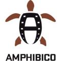 Amphibico