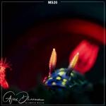 Scubalamp MS20 Macro Photography Lights (1200 Lumens, Four colors)